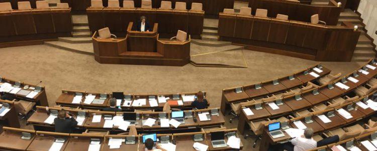 NRSR-plenum-ombudsmanka